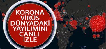 Korona virüs Canlı Harita